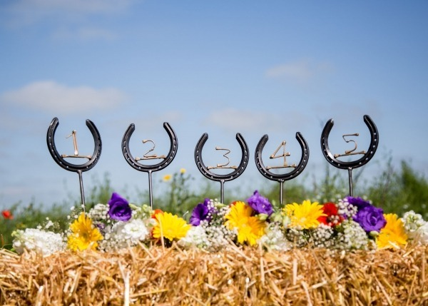 Wedding rental items, gifts for country lover wedding, equestrian gifts for wedding,horseshoe Table numbers ,wedding hire decorations