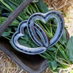 Linked hearts , wedding rental , horseshoe wedding ,equestrian gifts for her , rustic wedding